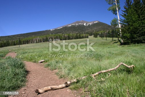 A deserted Spring trail scene up a mountain.