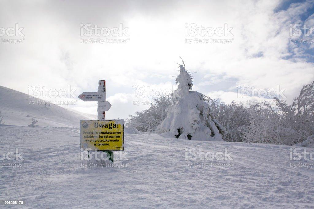 Ustrzyki Gorne, Poland - February 24, 2018: Mountain trail to Tarnica in winter. Bieszczady National Park in winter. Winter in the Bieszczady. Snow-covered trees and mountains. – zdjęcie