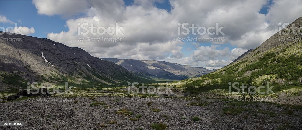 Mountain tundra with mosses and rocks covered with lichens, Hibi stock photo