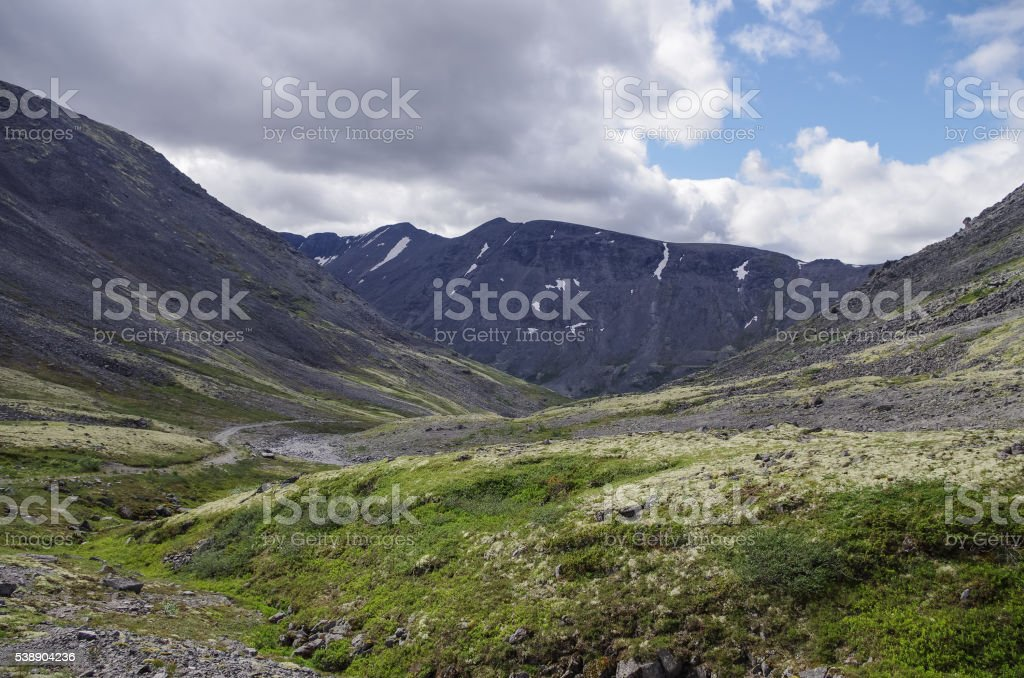Mountain tundra with mosses and rocks covered with lichens, stock photo