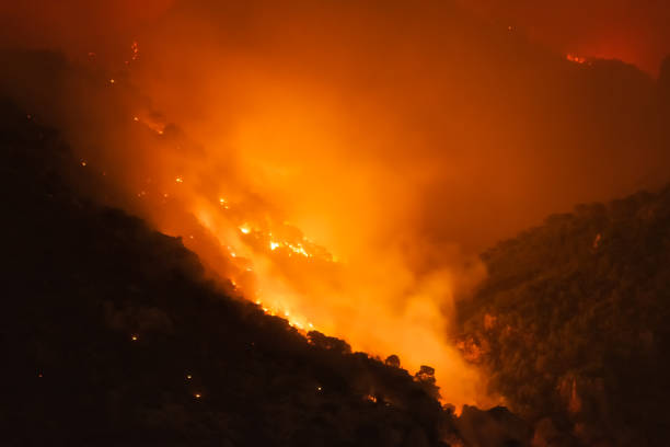 Mountain under fire at Loutraki in Greece. stock photo