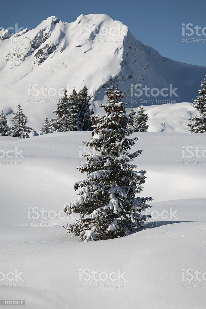 Mountain under snow, Savoie, Areches, France, Alps stock photo