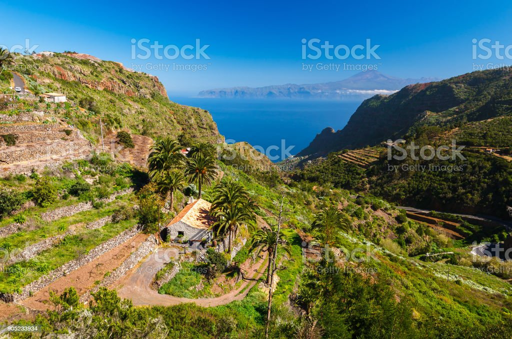 Mountain valley palm tree house sea Tenerife Teide background stock photo