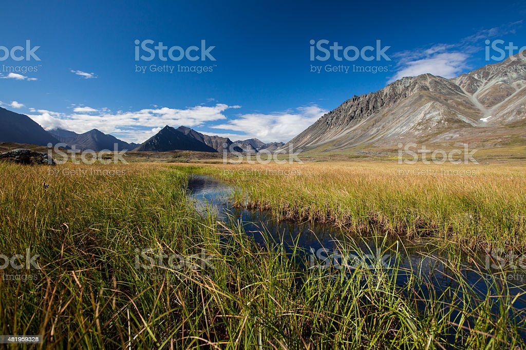 Mountain valley with glaciers stock photo