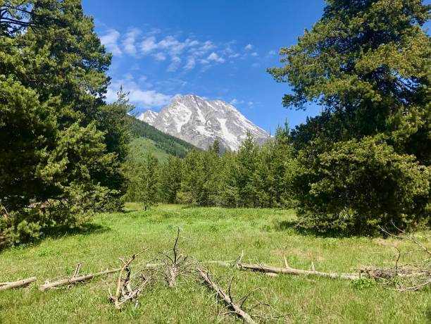 Mountain View in Center of Meadow stock photo