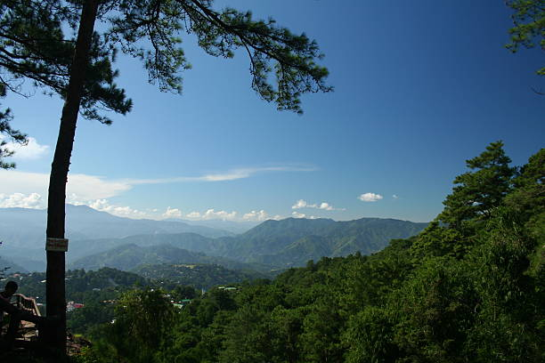 mountain view - baguio city stock photos and pictures