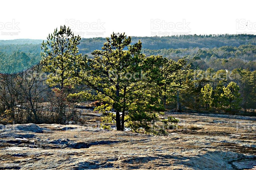 Vista para a montanha  foto royalty-free