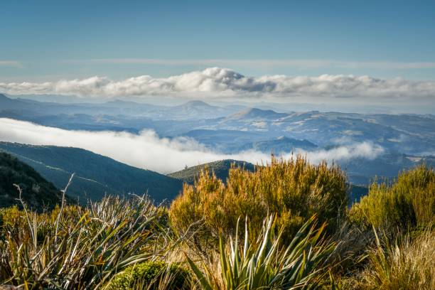 Mountain Views over Waitati, Dunedin, New Zealand stock photo