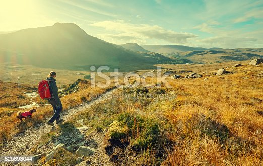 A hiker and their dog exploring the Scottish Countryside. This image has added grain and styling.