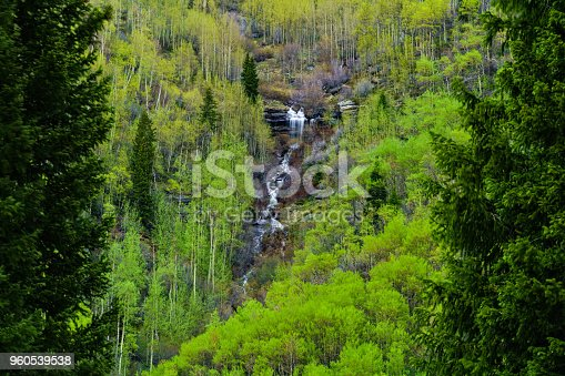 Mountain Waterfall in Spring Cascading Creek - Beautiful views of fresh green aspens and rugged waterfalls in mountain canyons. Landscape scenic nature view.