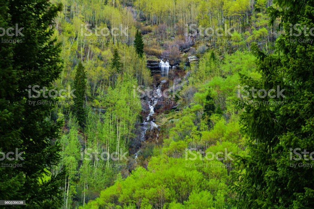 Mountain Waterfall in Spring Cascading Creek stock photo