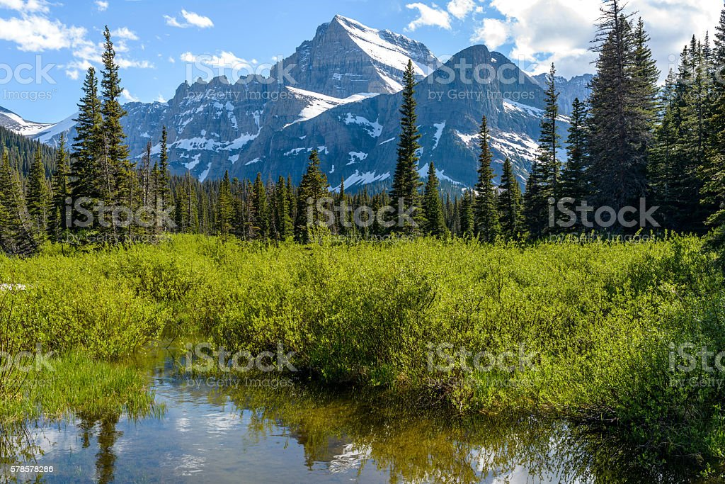 Mountain Wetland stock photo