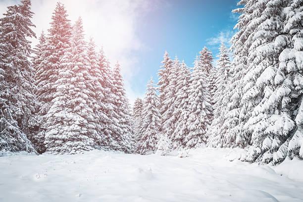 Mountain winter sunrise picture id624372850?b=1&k=6&m=624372850&s=612x612&w=0&h=hdmu30icugmkaqxvkxjporji31nrsbeofz3cid9riaq=