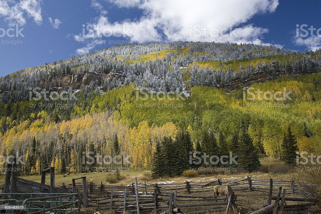 Mountain with fall colors and morning frost stock photo