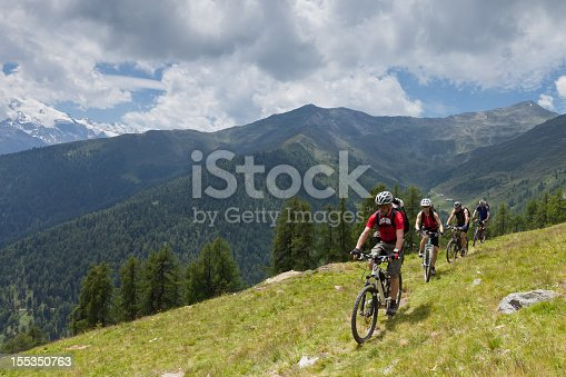 istock Mountainbike at alpine pastures, South Tyrol 155350763