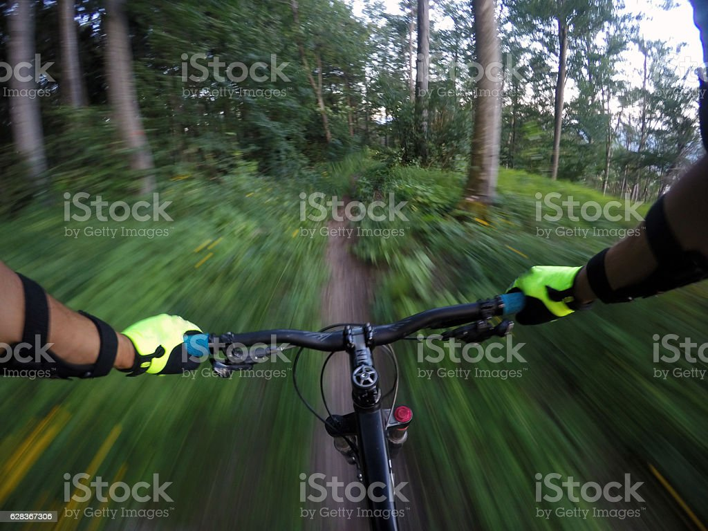 Mountainbiker on a trail in the forrest stock photo