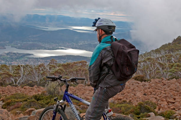 Mountainbikers view over the lake of Adamsfield. The bike tour goes trough eucalyptus forest. stock photo