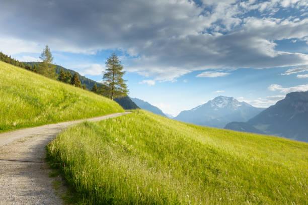 Mountainbiketrail Durch Eine Bergwiese Mit Berg Im Hintergrund – Foto