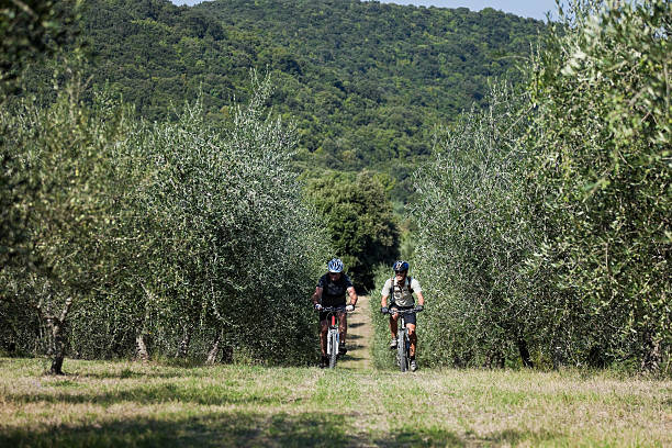 Mountainbiking at the olive grove, Umbria Two male mountainbikers are crossing an olive grove in the northern part of Umbria, Italy. umbria stock pictures, royalty-free photos & images