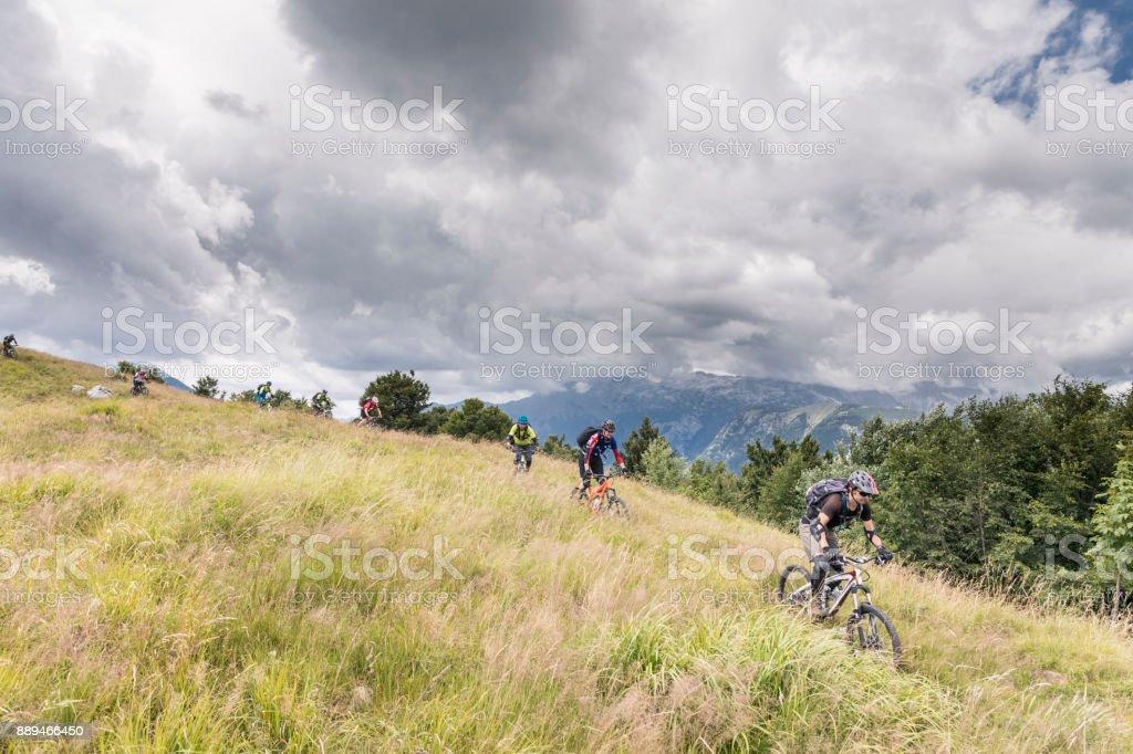 Mountainbiking in tall grass, Slovenia. stock photo