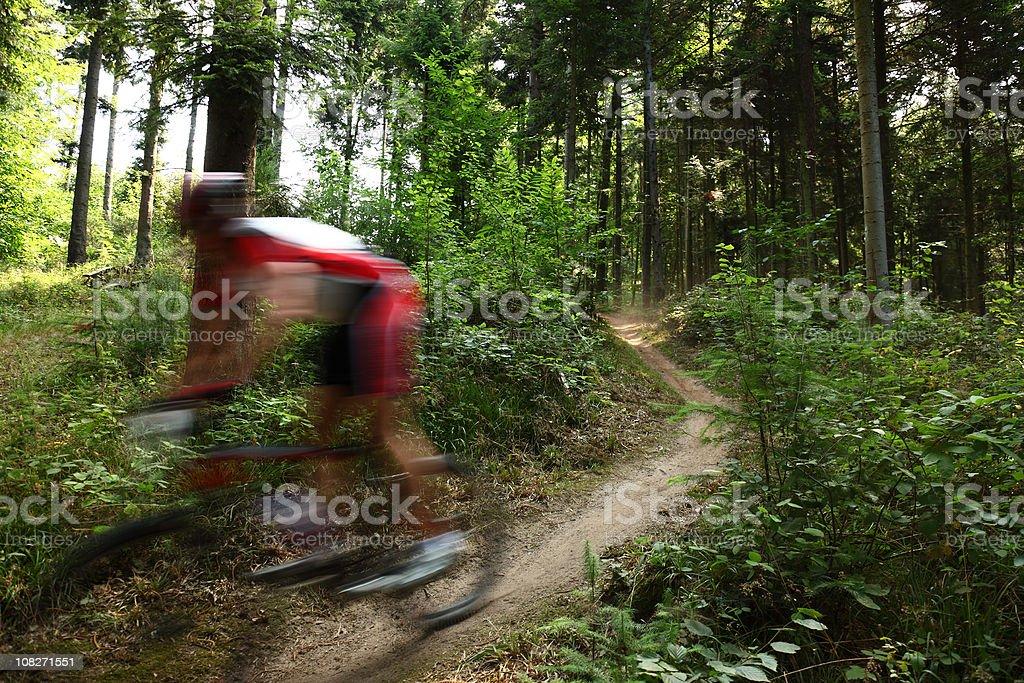 mountainbiking royalty-free stock photo