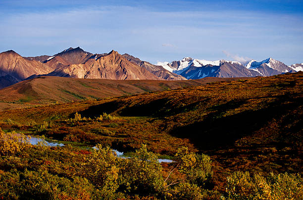 mountainous landscape mountainous landscape in Denali nationalpark high seat stock pictures, royalty-free photos & images