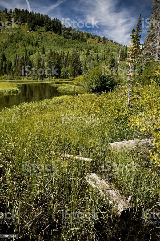 Mountainous Wetlands royalty-free stock photo