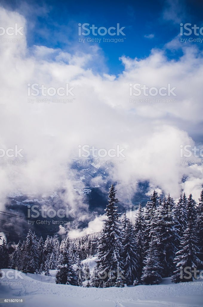 Mountains and forest in snow with the clouds Lizenzfreies stock-foto
