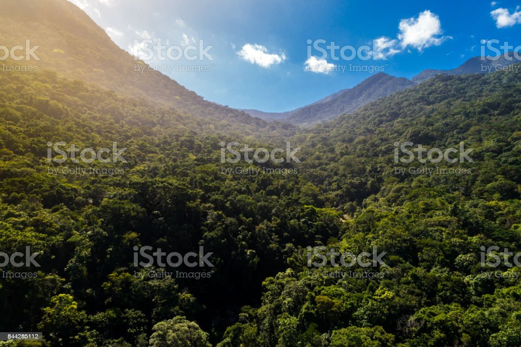 Mountains and Forest in South America stock photo