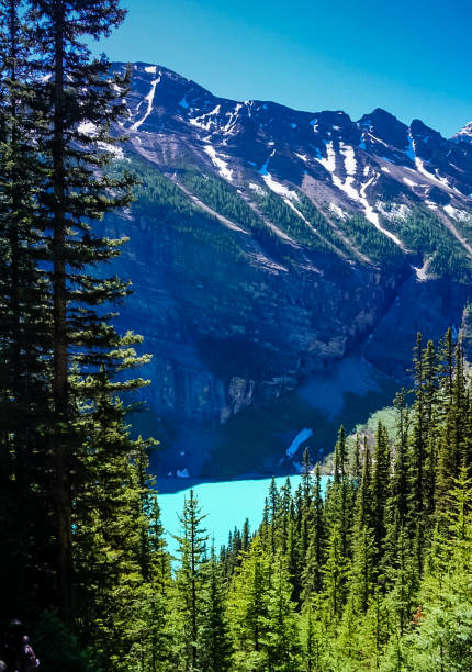 Mountains and Lake Louise in Banff National Park in Alberta, Canada stock photo