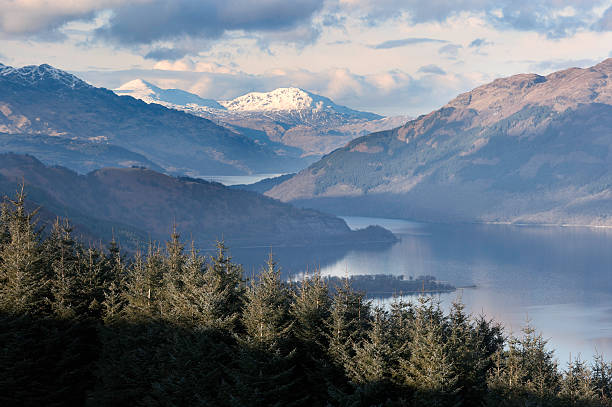 Mountains and trees near Loch Lomond An evening view north up Loch Lomond from Beinn Dubh. theasis stock pictures, royalty-free photos & images