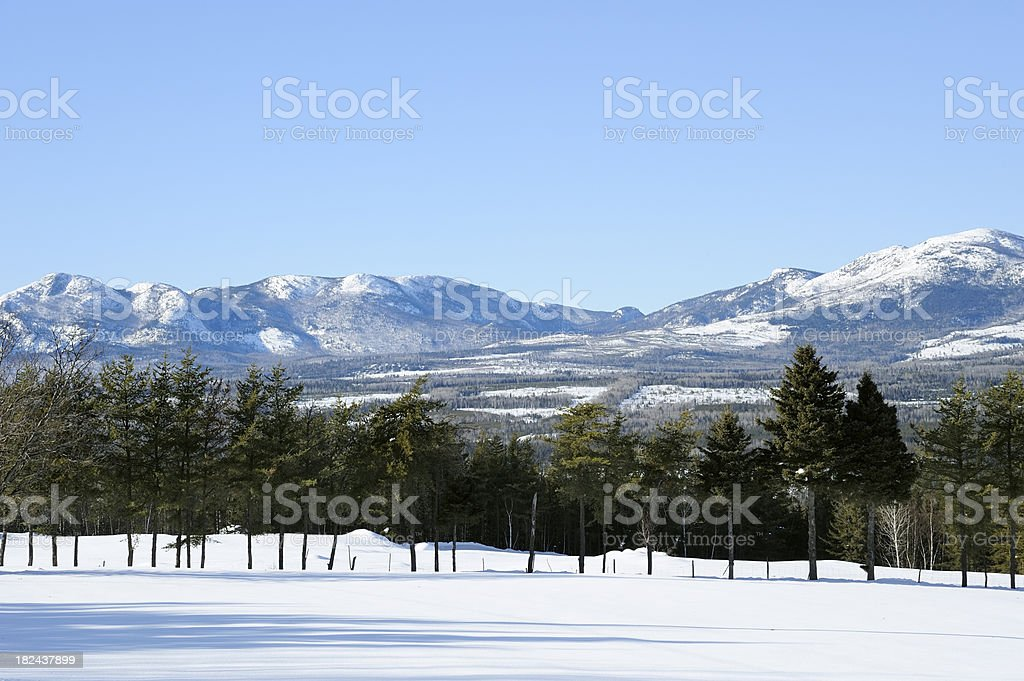 Mountains and trees royalty-free stock photo