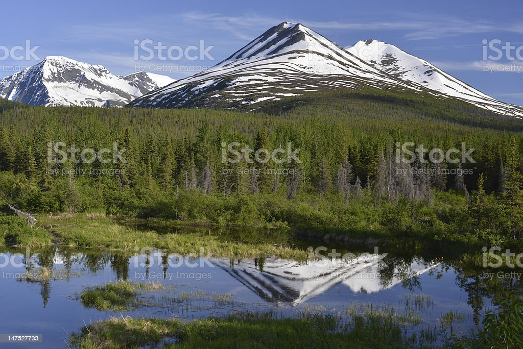 Mountains in Alaska royalty-free stock photo
