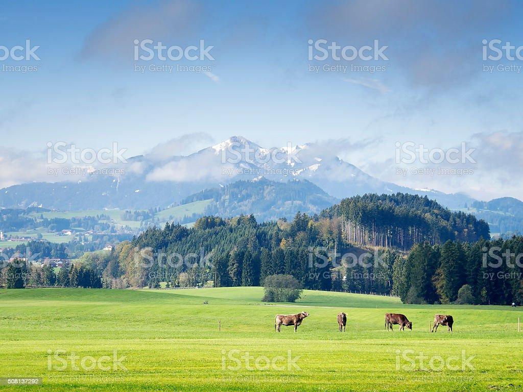 Mountains in Bavaria stock photo
