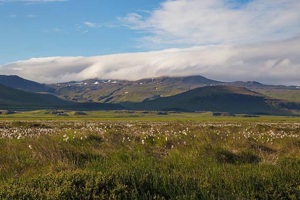 Berge in Island – Foto