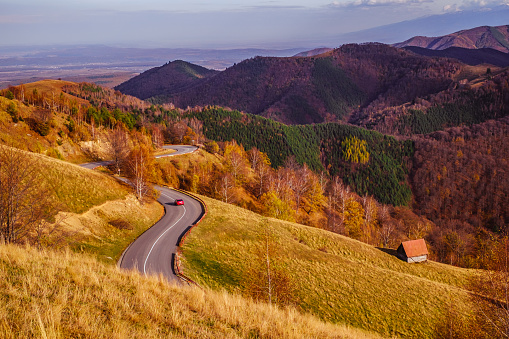 Mountains in the fall season, Paltinis area, Sibiu county, Romania