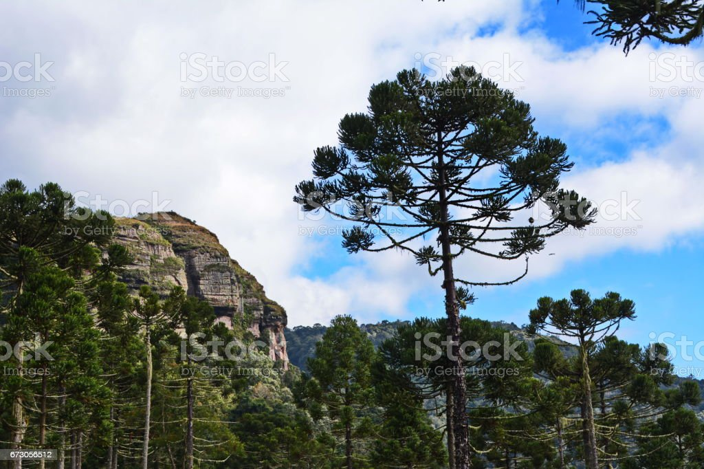 Mountains in Urubici stock photo