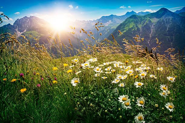 Mountains landscape in Vorarlberg stock photo