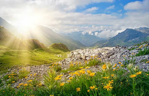 горы пейзаж - европейские альпы стоковые фото и изображения