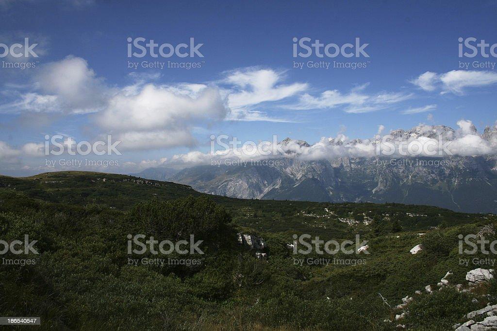 Mountain's meadows royalty-free stock photo