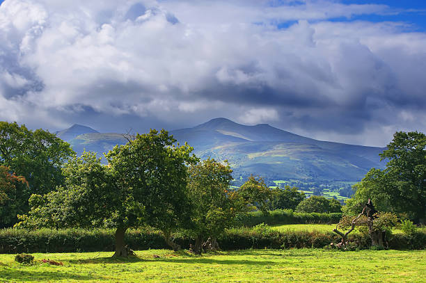 Mountains near Brecon in Wales A view of the Brecon Beacons National Park in Wales, at the foot of the mountains in a wooded area. south wales stock pictures, royalty-free photos & images