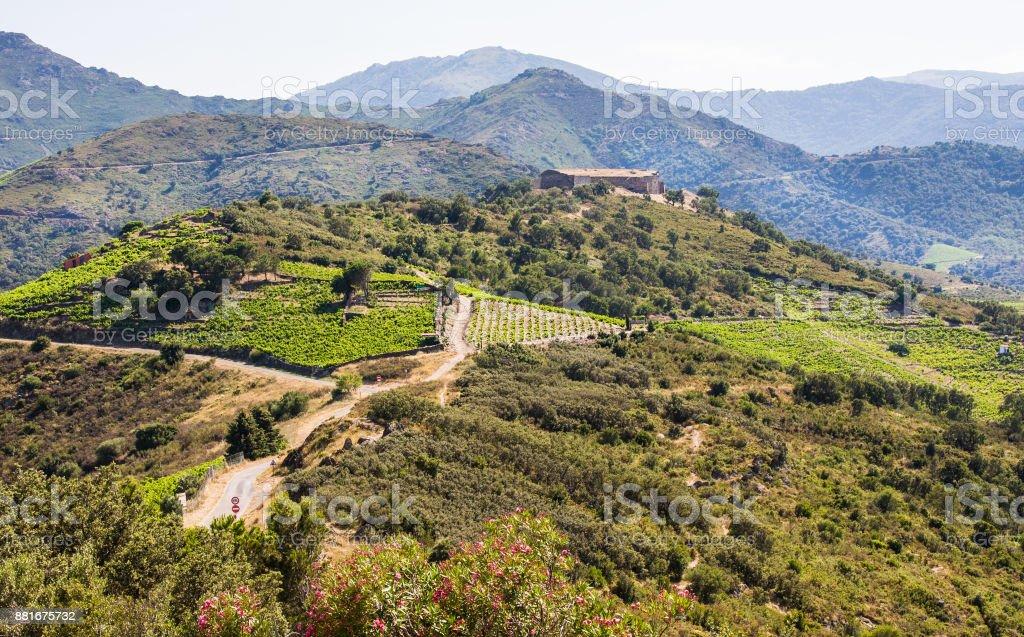Mountains near ollioure village, Roussillon, Vermilion coast, Pyrenees Orientales, France stock photo
