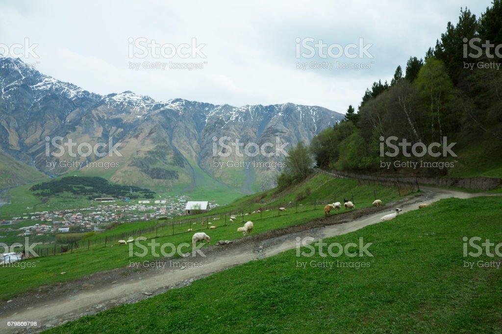 Mountains of country Georgia stock photo