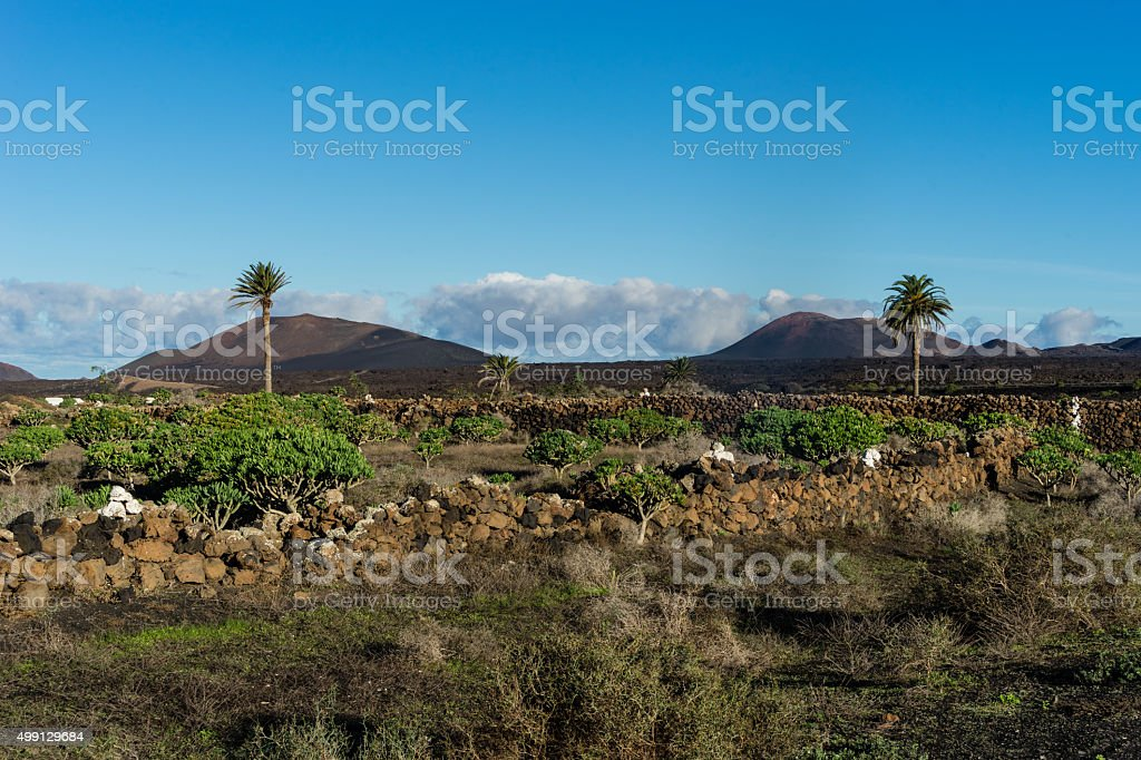 Montanas del Fuego stock photo