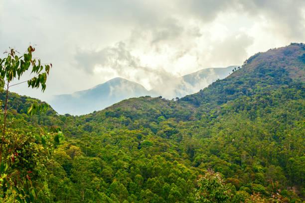 Mountains of Kerala stock photo