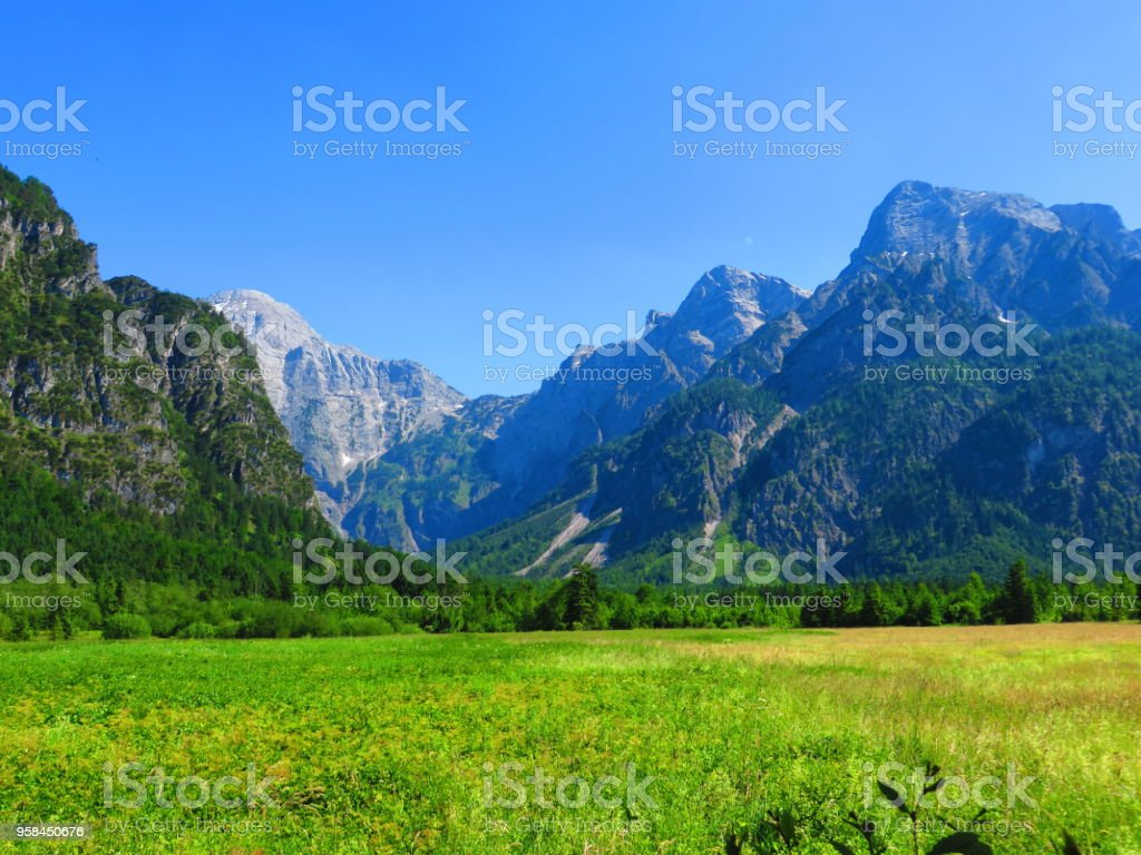 Mountains over meadows and forest stock photo
