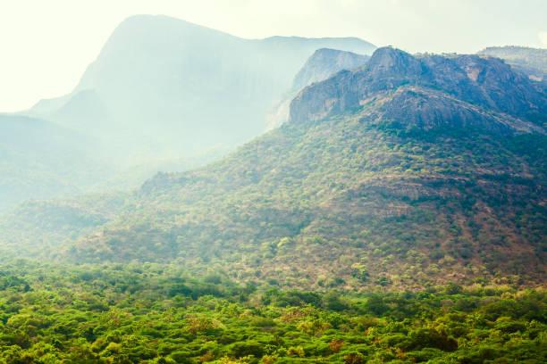 горы над джунглями в штате Керала stock photo