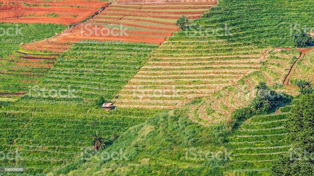mountains view in the morning at chaingmai northern thailand royalty-free stock photo