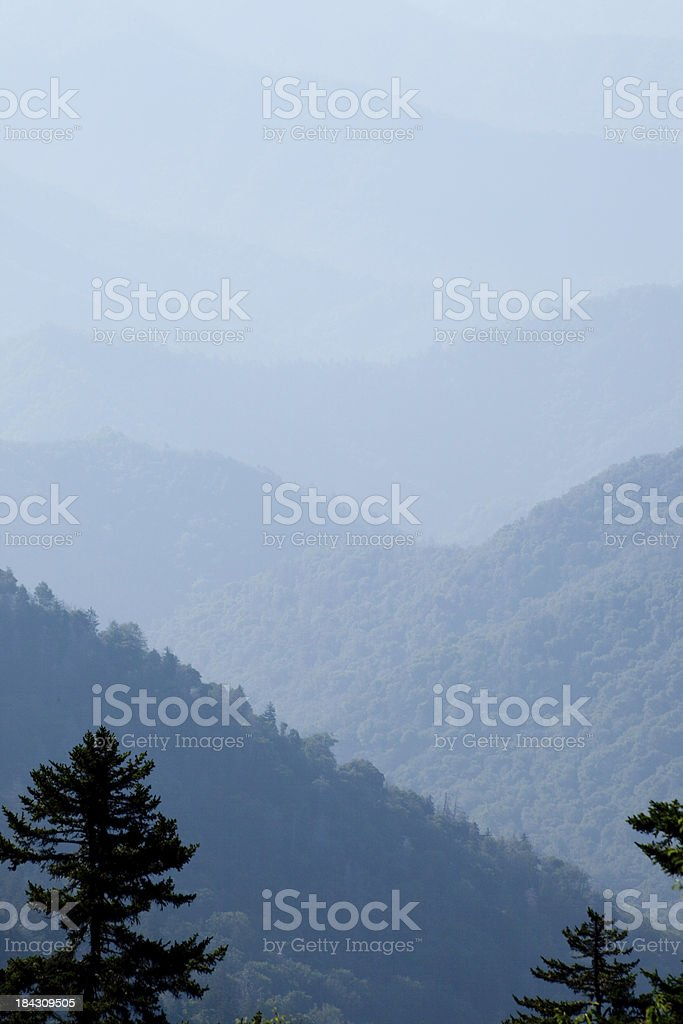 Mountains with pine trees in foreground royalty-free stock photo
