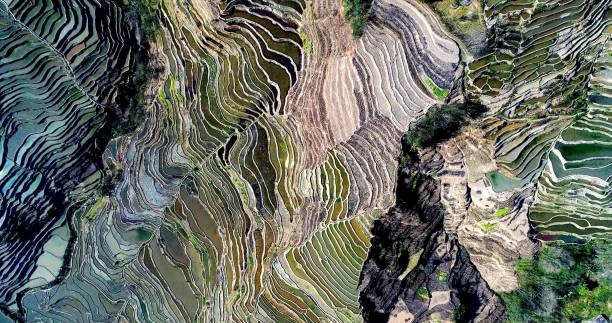 mountainside covered with water-filled rice fields creating unique pattern. - topography stock photos and pictures